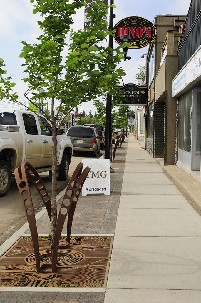 Improved streetscape along Central Avenue with street trees and unique tree grates