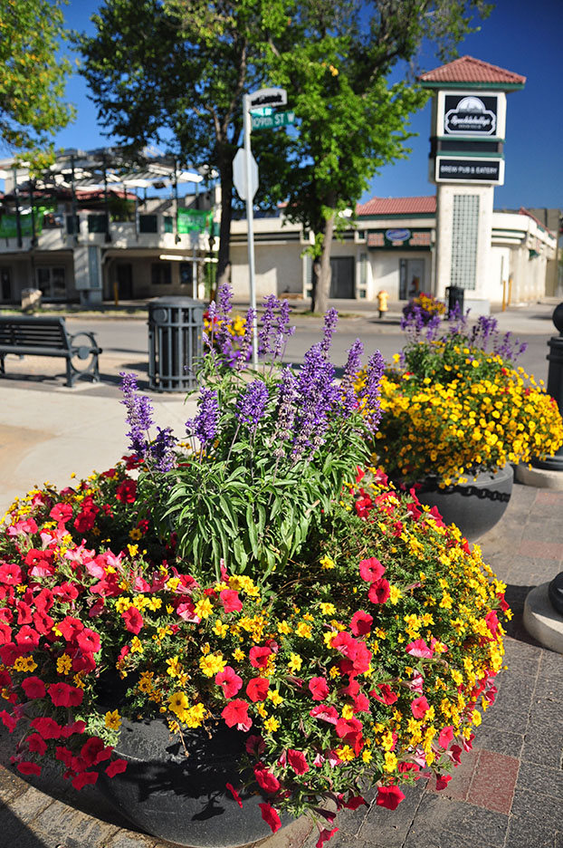 flower pots along the improved Central Avenue streetscape