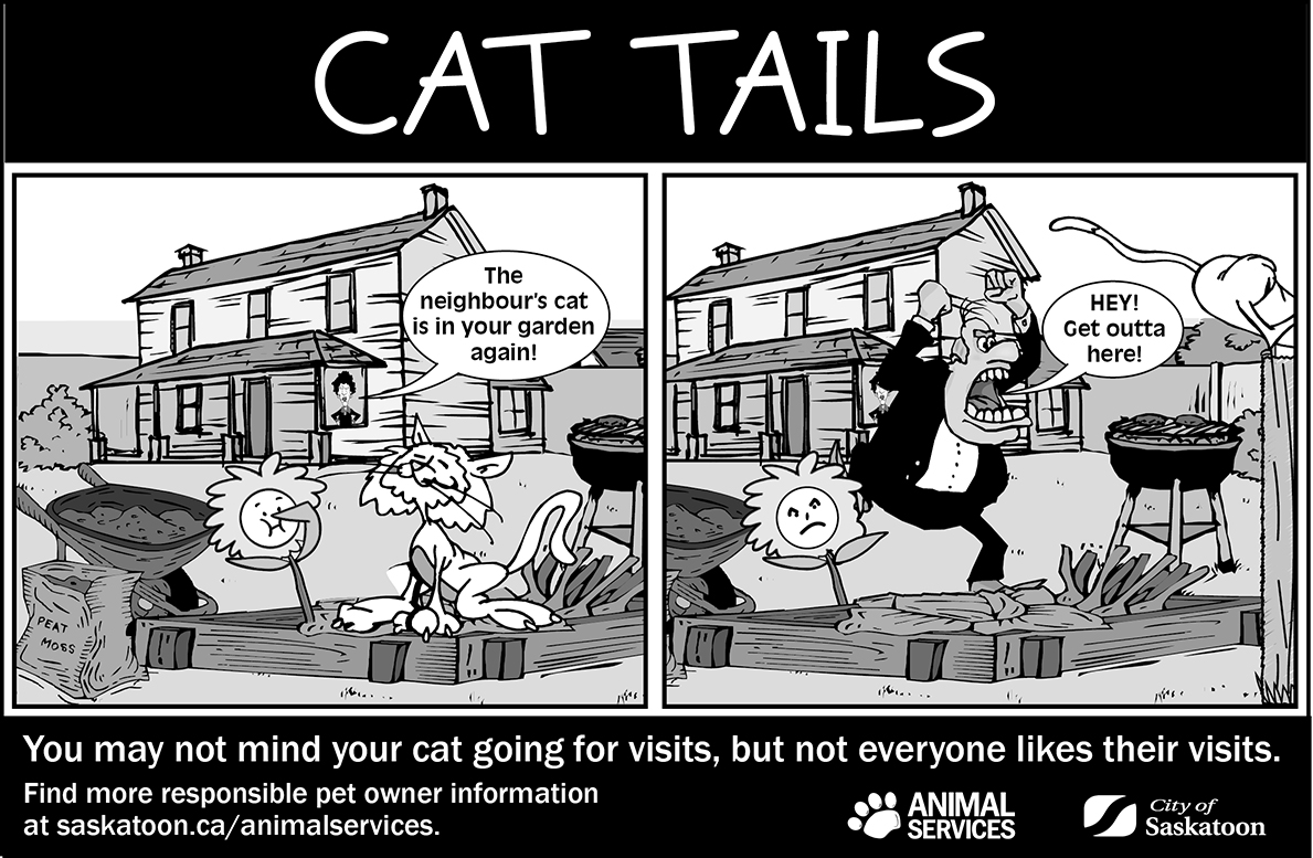 Cat Tails - Cats at Large