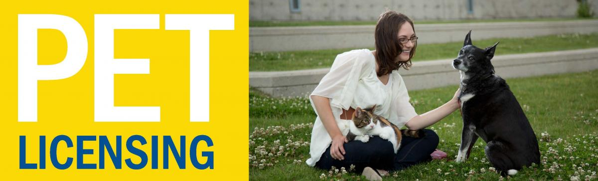 Pet Licensing   Saskatoon ca