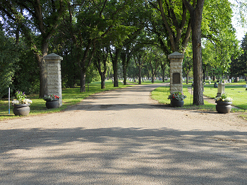 Memorial Avenue of Trees - Woodlawn Cemetery - present day