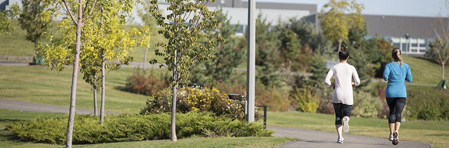 Park Locations & Amenities | Saskatoon ca